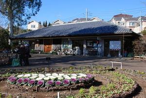 【東京】赤塚植物園:600種の草花を鑑賞できる!板橋区の緑のテーマパーク