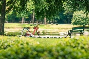 高松のおすすめ公園一覧:子供と遊べる遊具・アスレチックあり