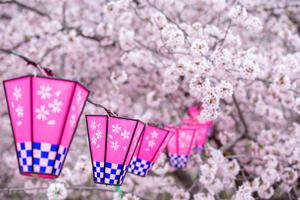 関東のおすすめ花見スポット・名所118選