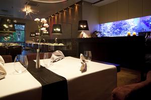 東京都内のアクアリウム・水槽のあるおすすめレストラン!デートや女子会にも使える