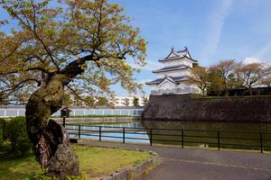 【新潟】新潟市でおすすめのグルメ・レストランまとめ:ランチやディナーでも使えます!