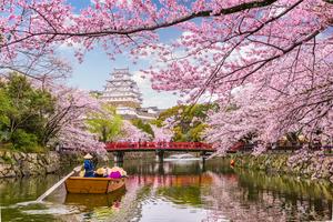 姫路で和室のあるホテルに泊まるならここ!大人数の宿泊でも便利に利用♪