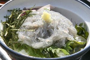 鎌倉でおすすめのグルメ・レストランまとめ:ランチやディナーで使えるお店をご紹介