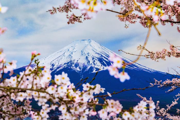 【山梨】富士山だけじゃない!山梨でおすすめの名所スポット9選