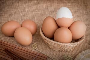 東京都内・関東近郊の絶品卵かけご飯12選:究極のTKGを食べに行こう