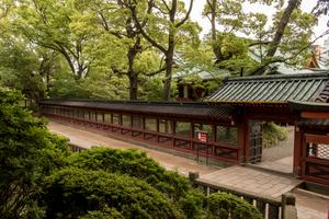 【東京・神社】ご利益あるかも!?絶対行きたいパワースポット15選