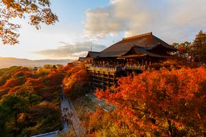 【京都・神社】絶対行きたいパワースポット10選|神社や寺院でパワーチャージ☆