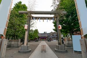 〜浅草神社をめぐる旅〜旅好き女子必見の権現造りの社殿
