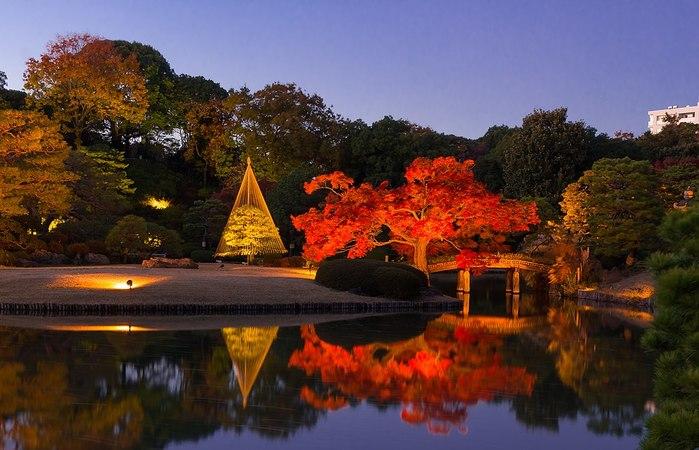 【東京】優美な紅葉狩りと一緒に楽しむ秋祭り5選