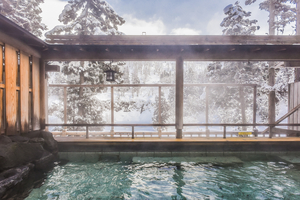 静岡で泊まりたいファミリー向けの旅館21選!子連れの家族旅行におすすめ