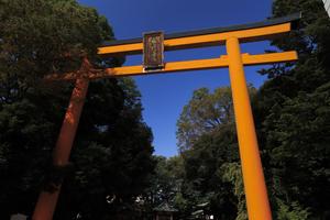 川越氷川神社をめぐる旅♥旅好き女子必見の縁結びのパワースポット神社