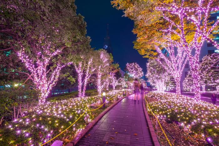【2019-2020年版】静岡のおすすめイルミネーション♪デートスポットに人気
