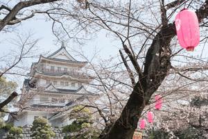 千葉城をめぐる旅♥旅好き女子必見の四季折々の風景を楽しめる別名「亥鼻城」