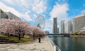 【神奈川】横浜市で宿泊したいおすすめの旅館5選!気軽に泊まれるリーズナブルな宿から高級旅館まで