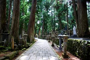 【和歌山】高野山周辺のラグジュアリーに滞在できる高級ホテル&旅館5選!記念日利用にもおすすめ