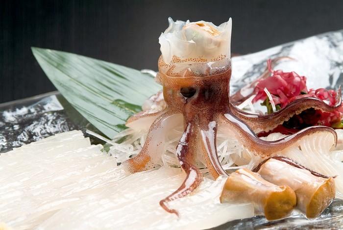 北海道で活イカを食べるならココ!おすすめのお店5選をご紹介