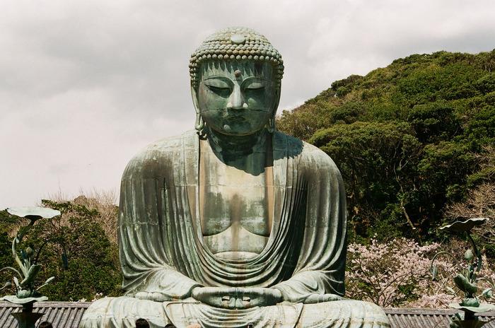 鎌倉観光で忘れずに買いたい!おすすめのお土産30選