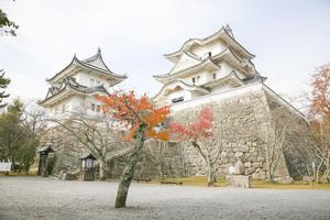 【三重】伊賀市で宿泊したいおすすめの旅館4選!気軽に泊まれるリーズナブルな宿から高級旅館まで