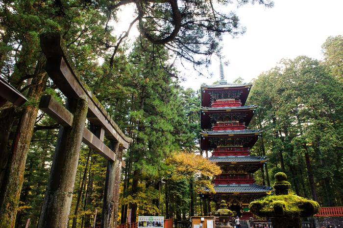 【栃木】日光市でおすすめのペンション20選!自然に囲まれながらのんびり滞在