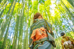 【神奈川】鎌倉市でおすすめのペンション!自然に囲まれながらのんびり滞在