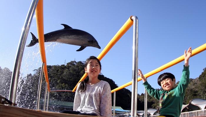 【静岡】伊豆で子供連れにおすすめの遊び場スポット16選