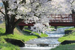 福島で宿泊したいおすすめのペンション15選!自然に囲まれながらのんびり滞在