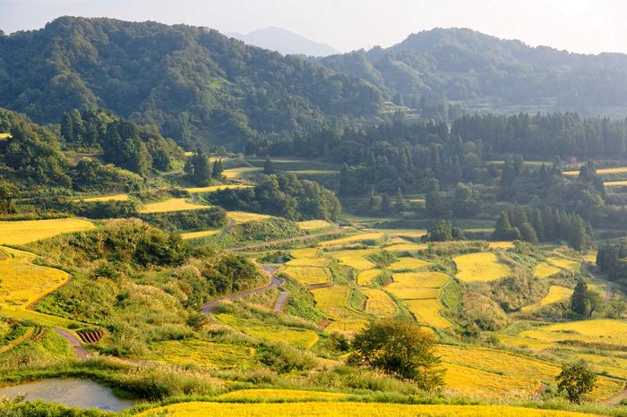 【新潟】南魚沼・十日町・津南(六日町)でおすすめのペンション10選!自然に囲まれながらのんびり滞在