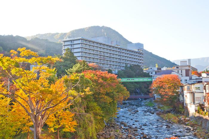 【栃木】那須・塩原で宿泊したいおすすめの高級旅館10選!宿選びに役立つ温泉情報も