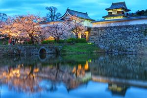 福岡で宿泊したいおすすめの高級旅館6選!宿選びに役立つ温泉情報も