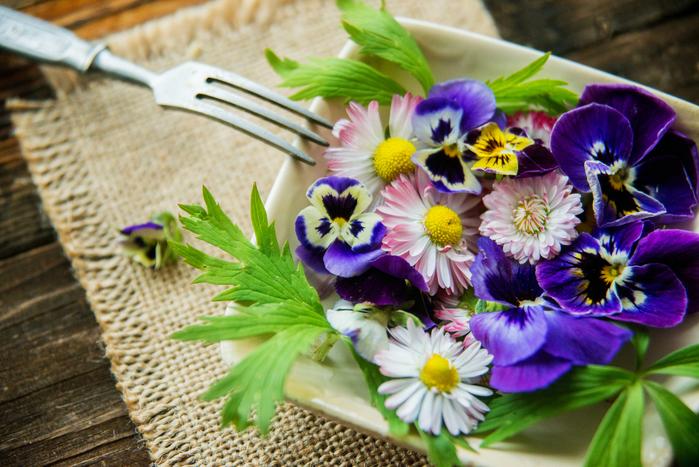 「花のババロア」はどこで買える?綺麗すぎて食べるのがもったいない⁉人気の秘密を大調査!