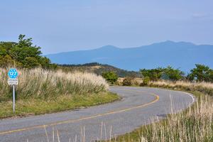 【静岡】西伊豆でおすすめのペンション10選!自然に囲まれながらのんびり滞在