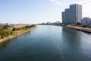 多摩川サイクリングロードを走破!爽快な景色と人気立ち寄りスポットの橋や公園を紹介!
