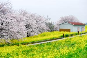 【埼玉】熊谷で宿泊したい人気のおすすめカプセルホテル