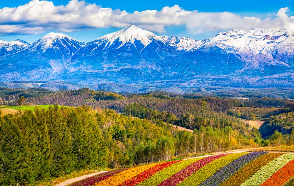 北海道の大自然の中で車を走らせよう!ドライブで巡る人気の観光スポット13選!