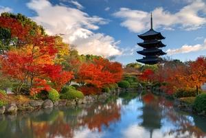 奈良市で贅沢ホテルに泊まるならココがおすすめ!誕生日や記念日にぴったり☆