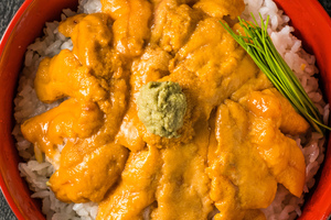 【北海道】積丹のうには濃厚!季節限定の北海道の味を楽しめるうに丼おすすめ店舗13選