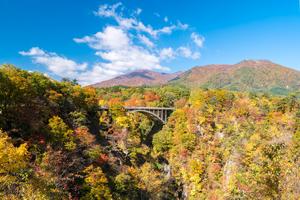 東北6県の人気観光スポットを紹介!一度は訪れたい☆