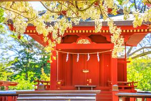 【大阪】大きな口を開けたご神体?難波八坂神社の歴史や見どころまとめ