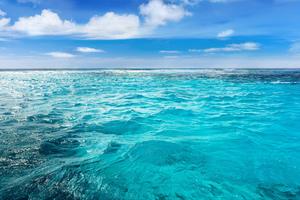 【高知県・柏島】透明度抜群!エメラルドグリーンの海が広がる観光スポットを詳しく紹介