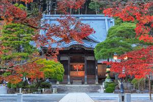 【静岡】修善寺でオーベルジュに泊まるならココがおすすめ!おすすめオーベルジュ4選