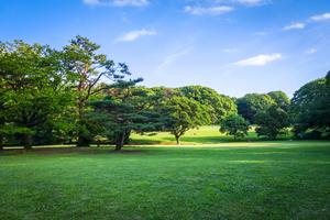 【東京】お花見やジョギングにおすすめの公園13選!疲れた体が癒やされる♪