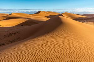【静岡・浜松】日本三大砂丘のひとつである中田島砂丘とは?貴重な生物や自然が織りなす景色や見どころを紹介