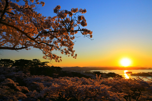 松島でランキング上位のホテル10選!大切な時間を過ごすならここ!