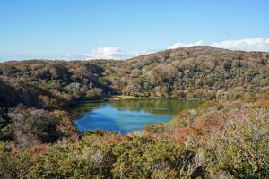 伊豆高原でランキング上位のホテル20選!楽しい旅はホテル選びから