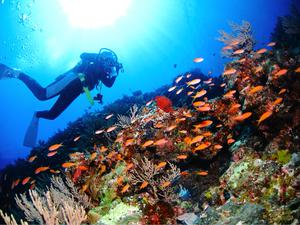 【沖縄】ラピスマリンスポーツの魅力を紹介!初心者でも青の洞窟ダイビングが楽しめる