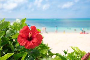 【沖縄・恩納村】ムーンビーチでマリンスポーツを満喫しよう!周辺エリアのグルメ情報も!!