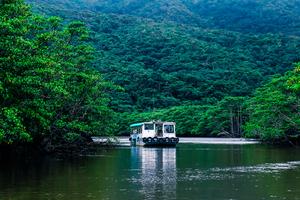 【沖縄】沖縄最大の川「浦内川」とは?アクティビティも楽しめる!