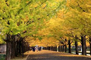 【東京】立川駅でおすすめの駅近ホテル!選ぶならココ!