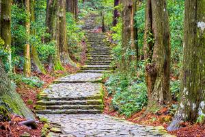 【和歌山・三重】熊野古道周辺でおすすめのホテル10選!日本人なら一度は訪れたい旅先へ
