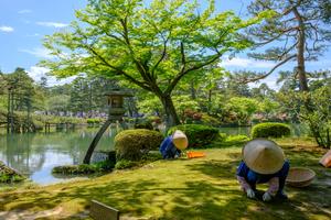 【石川】金沢でおすすめの観光コースやグルメの楽しみ方まとめ|季節ごとに多様に楽しめます!